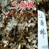 江苏沭阳三角枫种子报价 三角枫种子播种...