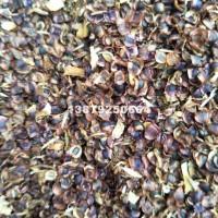 九江金鸡菊种子价格最优惠