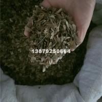 九江小叶鸡爪槭种子中哪里价格最优惠