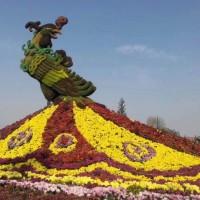 山东潍坊五色草多少钱