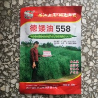 供应德矮油588油菜籽种子花榨油秋播耐寒旱抗病易活种植